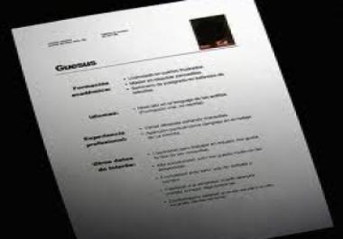 create a professional CV